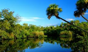 Port St Lucie Fl Map Residential Land For Sale In St Port Lucie Florida Premium Lot