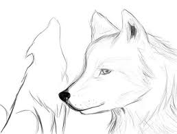 70 best draw a wolf images on pinterest drawings draw and wolves