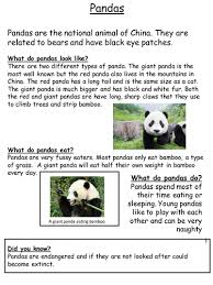 animal non chronological report examples by mrsteer teaching