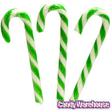where to buy pickle candy canes pickle candy canes 6 box candywarehouse