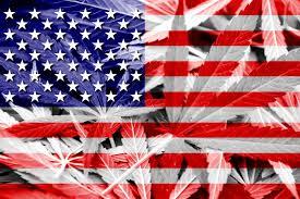 Colorado Flag Marijuana Legal Marijuana Could Create 1 Million Jobs Study Shows But Is