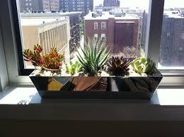 Herb Window Box Indoor Windows Indoor Windowsill Planter Designs 15 Phenomenal Indoor