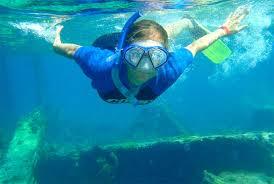 Florida snorkeling images Snorkeling boca raton florida fort lauderdale snorkel tour get jpg