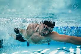 inside swimming pool underwater shot of fit swimmer training in the pool professional