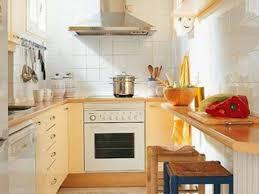 Small Kitchens Designs Design Small Kitchens