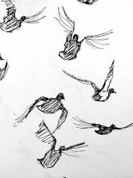 drawn duck flight drawing pencil and in color drawn duck flight