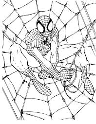 kids 7 spider man coloring pages