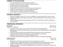 Professional Profile Resume Template Resume Java Engineer Hibernate J2ee Finance Il Jobs Apply