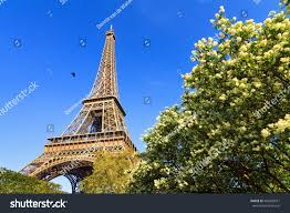 Beautiful Eiffel Tower by Beautiful View Spring Blossom Trees Eiffel Stock Photo 403568011