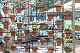How To Plant Vertical Garden - your guide to creating a vertical garden lifestyle home