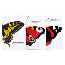 robert william a6 butterflies notebook 3 pack edu sci