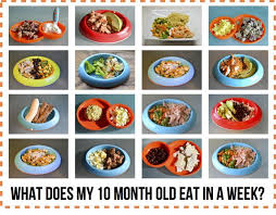 table food for 9 month old 73 best monthly food chart for babies images on pinterest baby