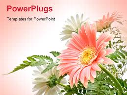 images of flowers powerpoint templates sc