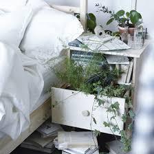 grünpflanzen im schlafzimmer grünpflanzen bringen natur aus ruhe in dein schlafzimmer
