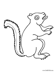 squirrel coloring pages hellokids com