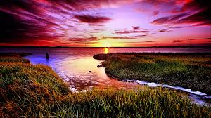 colourful beauty cool warm stream amazing life 3d nature wallpaper