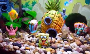 top spongebob fish tank decorations and setup guide