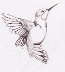 pictures easy pencil drawings of birds drawing art gallery
