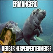 Berks Girl Meme - 22 best ermahgerd images on pinterest ha ha funny photos and