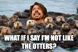 Benedict Cumberbatch Otter Meme - benedict cumberbatch posing like otters pics