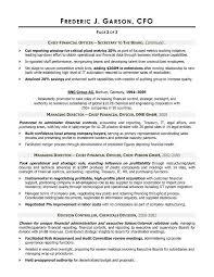cfo resume samples resume cv cover leter