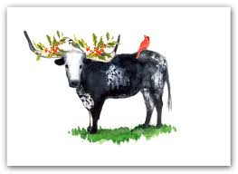 cow greeting cards cow christmas card christmas lights decoration