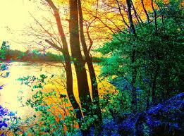 autumn pictures beautiful landscape photography u2013 autumn sunset