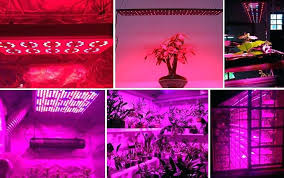 used led grow lights for sale used grow light for sale best selling all product full spectrum led