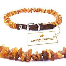 dog necklace leather images Amber flea and tick collar with adjustable leather strap for dogs