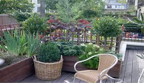 roof garden plants gardens