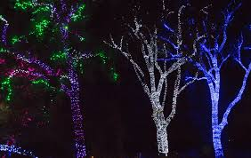 Zoo Lights Az by Kastle U0027s Journey Mesa Good Life Rv Resort