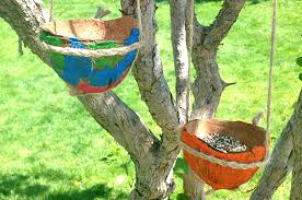 painted coconut shell bird feeder