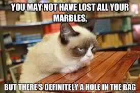 New Grumpy Cat Meme - pin by chillie falls on brat the cat pinterest grumpy cat