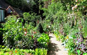 Kitchen Garden Designs Kitchen Garden At Best Potager Gardens Images On Pinterest Modern
