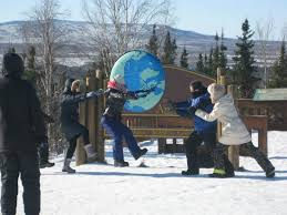 Alaska wildlife tours images Alaska wildlife guide day tours fairbanks top tips before you jpg