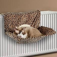 window perches u003c cat furniture what cats need