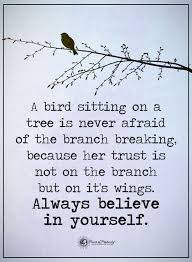 the 25 best tree quotes ideas on pinterest quotes on fear