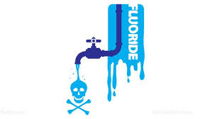 kitchen faucet brand logos top 10 reasons to avoid u s tap water at all costs