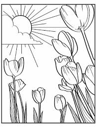 spring coloring sheets printable spring coloring pages
