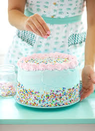 party cake birthday party cake tales of july sweetapolita