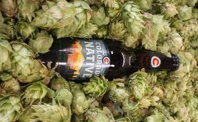 colorado native plants short on hops colorado brewer calls on backyard farmers modern