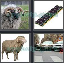 4 pics 1 word all level 2701 to 2800 3 letters answers game