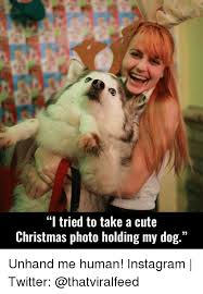Cute Christmas Meme - i tried to take a cute christmas photo holding my dog unhand me