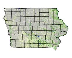 Iowa vegetaion images About the iowa prairie network who we are board of directors jpg