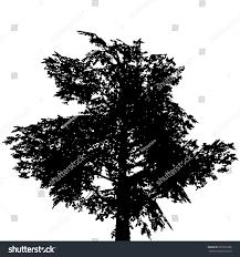 alder tree shape stock vector 601825286