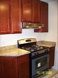 Condominium Kitchen Design by Canton Michigan Kitchen Remodeling Pictures For Ideas