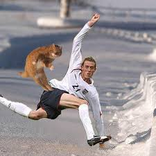 Peter Crouch Meme - image 18437 peter crouch can do anything know your meme