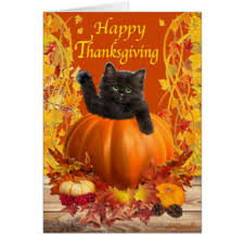 thanksgiving cats greeting cards zazzle