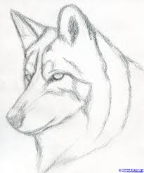 easy pencil drawings step by step wolf drawing of sketch