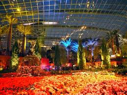 flower dome gardens by the bay spunktitud3